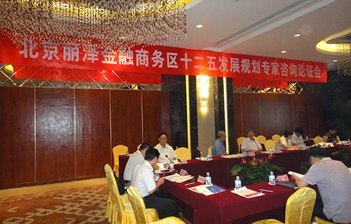 14丽泽金融商务区规划专家会(2011.8.).JPG